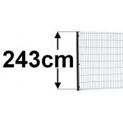 wysokość 243cm (0)